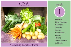 CSA Week 1 Graphic