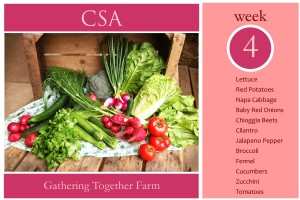 CSA Week 4 Graphic