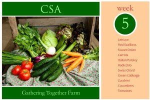 CSA Week 5 Graphic