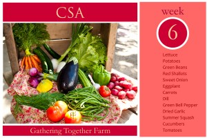 CSA Week 6 Graphic