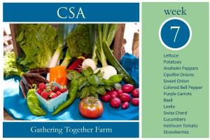 CSA Week 7 Graphic