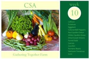 CSA Week 10 Graphic