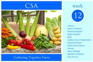 CSA Week 12 Graphic