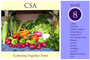 CSA Week 8 Graphic