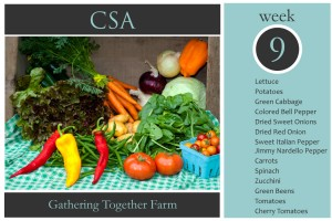 CSA Week 9 Graphic