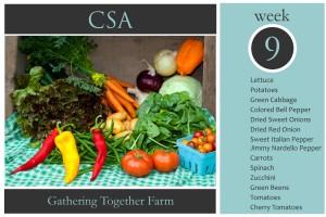 CSA Week 9 Graphic