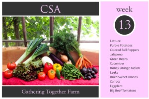 CSA Week 13 Graphic