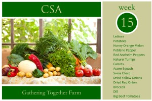 csa-week-15-graphic