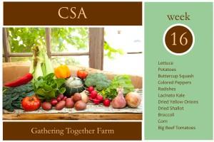 csa-week-16-graphic