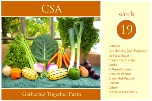 csa-week-19-graphic