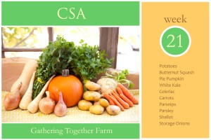 csa-week-21-graphic